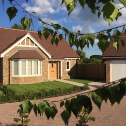 plot 3 front leafy